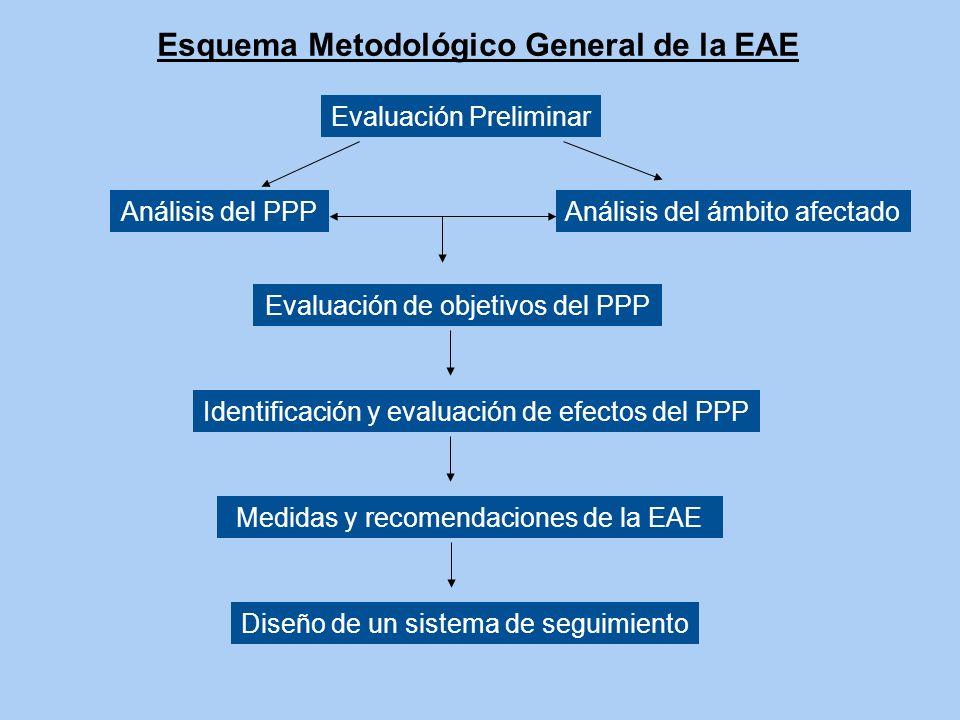 Esquema Metodológico General de la EAE