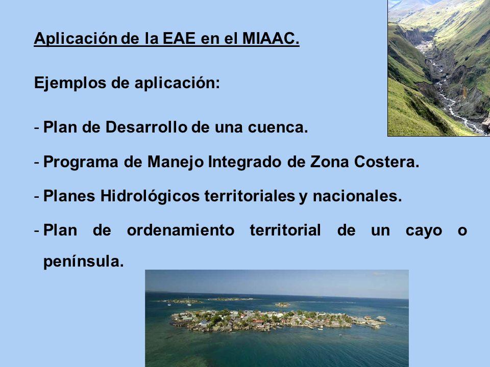 Aplicación de la EAE en el MIAAC.