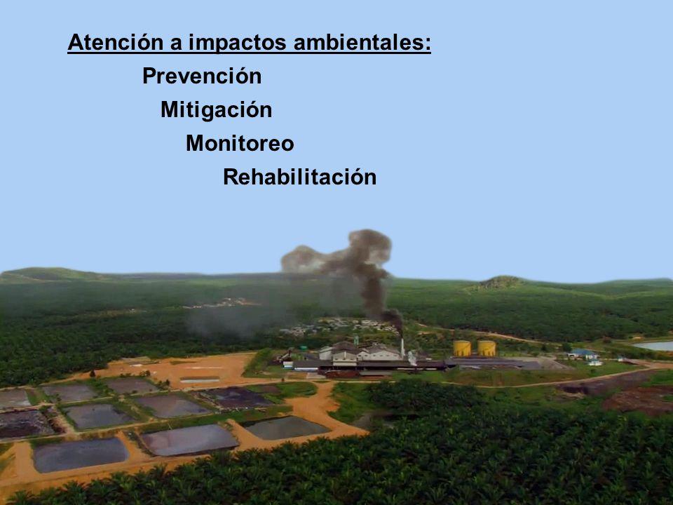 Atención a impactos ambientales: