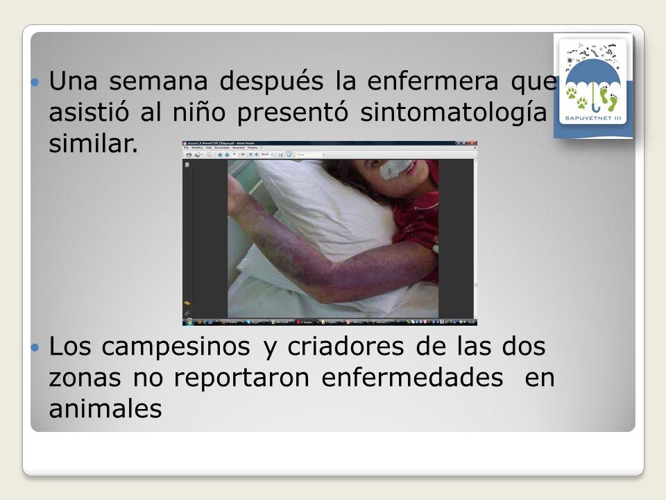 Una semana después la enfermera que asistió al niño presentó sintomatología similar.