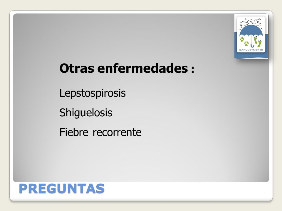 Otras enfermedades : PREGUNTAS Lepstospirosis Shiguelosis