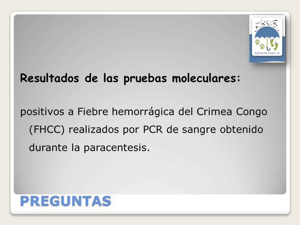 PREGUNTAS Resultados de las pruebas moleculares: