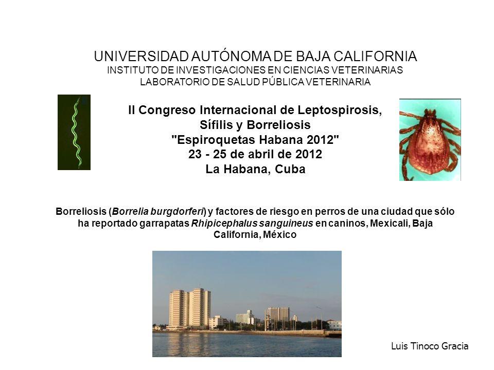UNIVERSIDAD AUTÓNOMA DE BAJA CALIFORNIA INSTITUTO DE INVESTIGACIONES EN CIENCIAS VETERINARIAS LABORATORIO DE SALUD PÚBLICA VETERINARIA II Congreso Internacional de Leptospirosis, Sífilis y Borreliosis Espiroquetas Habana 2012 23 - 25 de abril de 2012 La Habana, Cuba Borreliosis (Borrelia burgdorferi) y factores de riesgo en perros de una ciudad que sólo ha reportado garrapatas Rhipicephalus sanguineus en caninos, Mexicali, Baja California, México