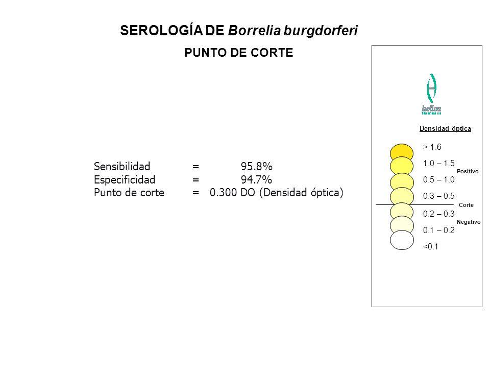 SEROLOGÍA DE Borrelia burgdorferi PUNTO DE CORTE