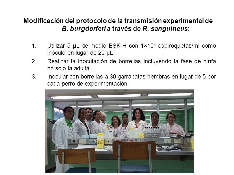 Modificación del protocolo de la transmisión experimental de B
