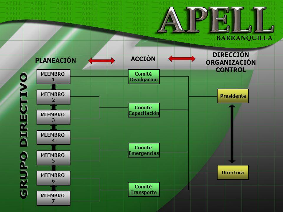 GRUPO DIRECTIVO DIRECCIÓN ACCIÓN ORGANIZACIÓN PLANEACIÓN CONTROL