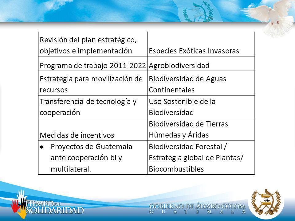 Revisión del plan estratégico, objetivos e implementación