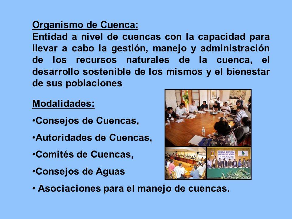 Organismo de Cuenca: