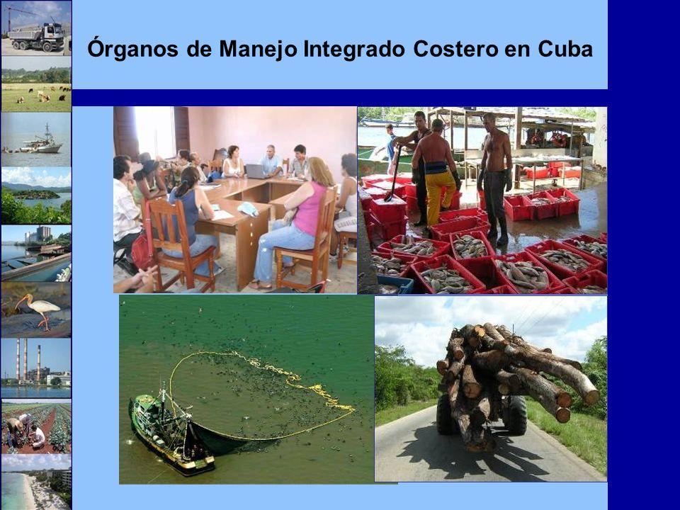 Órganos de Manejo Integrado Costero en Cuba