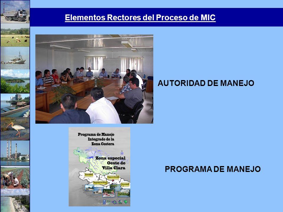 Elementos Rectores del Proceso de MIC