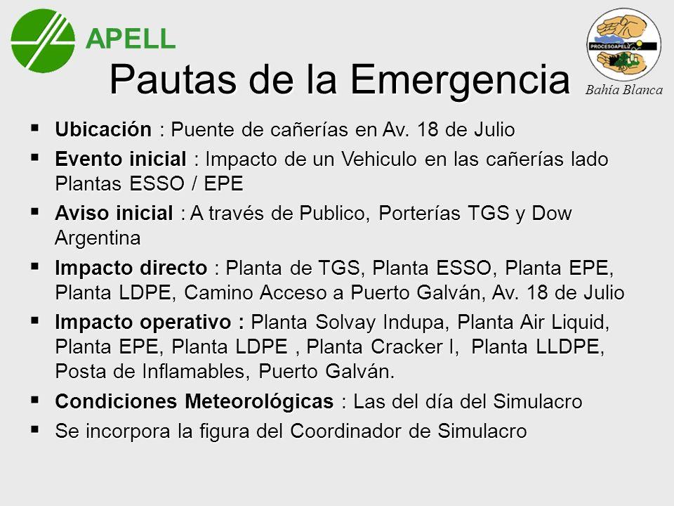 Pautas de la Emergencia