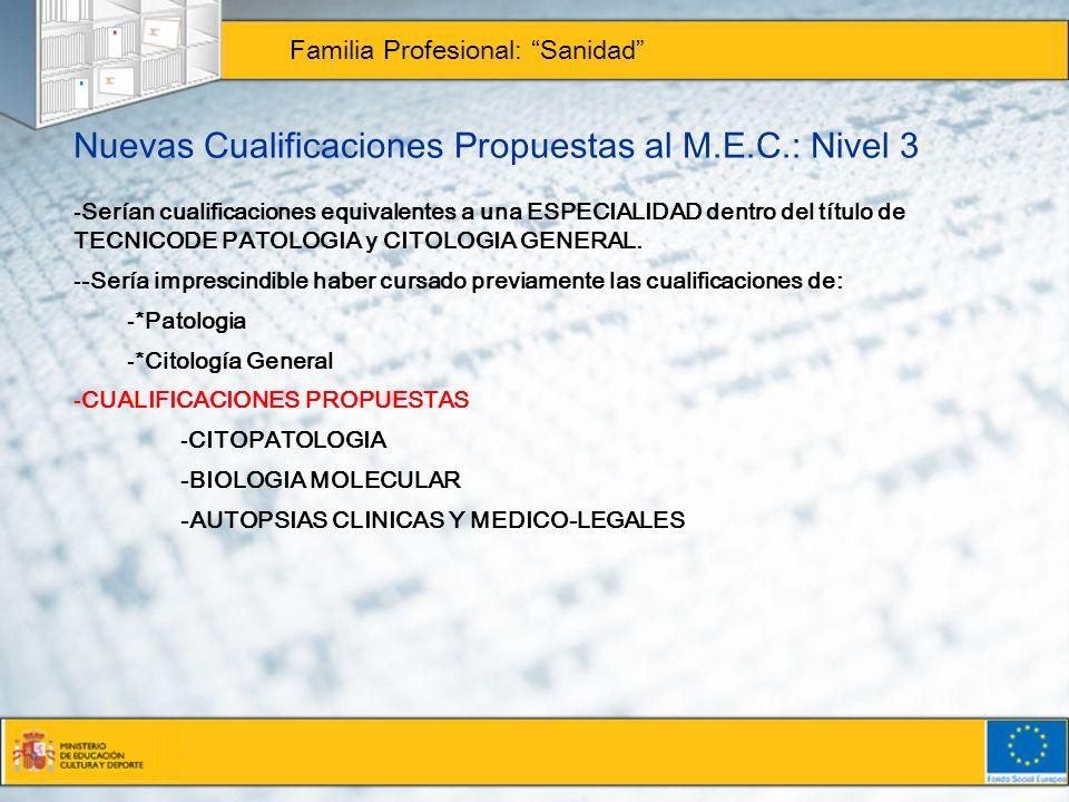 Nuevas Cualificaciones Propuestas al M.E.C.: Nivel 3