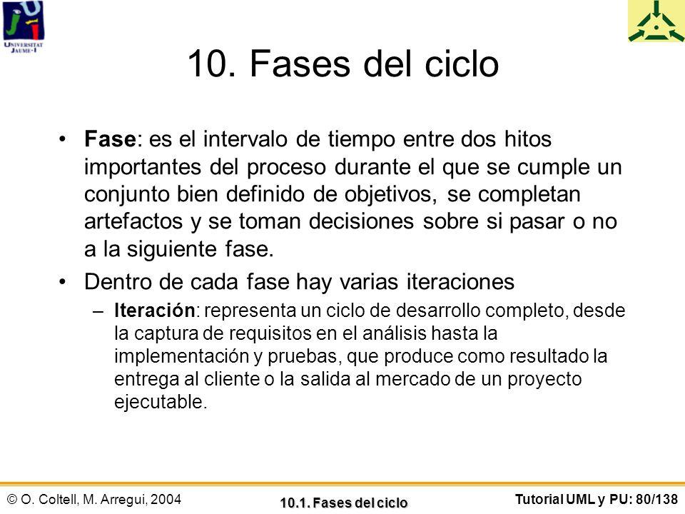 10. Fases del ciclo