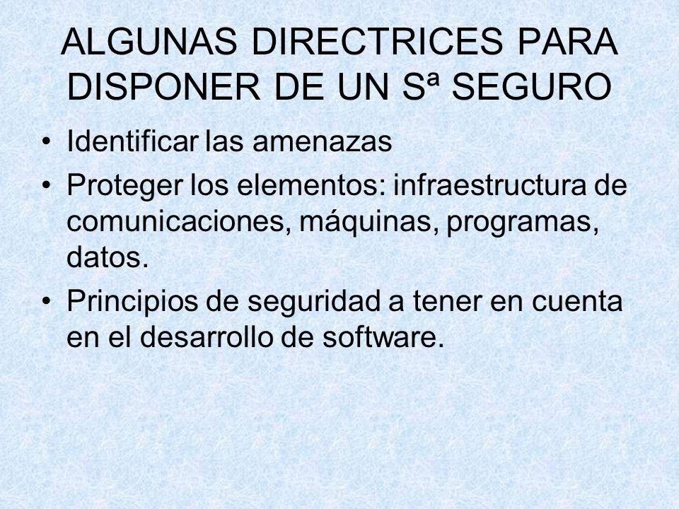 ALGUNAS DIRECTRICES PARA DISPONER DE UN Sª SEGURO