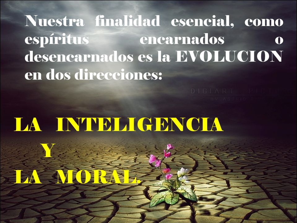 LA INTELIGENCIA Y LA MORAL.