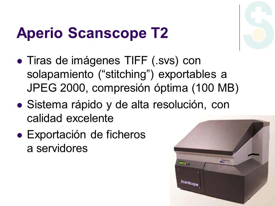 Aperio Scanscope T2Tiras de imágenes TIFF (.svs) con solapamiento ( stitching ) exportables a JPEG 2000, compresión óptima (100 MB)