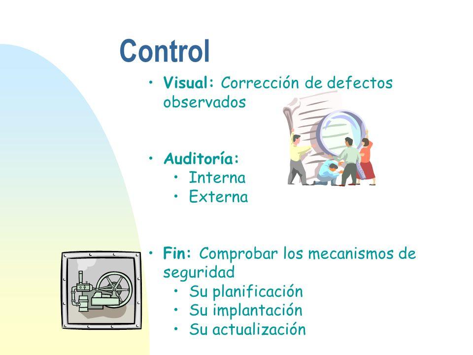 Control Visual: Corrección de defectos observados Auditoría: Interna