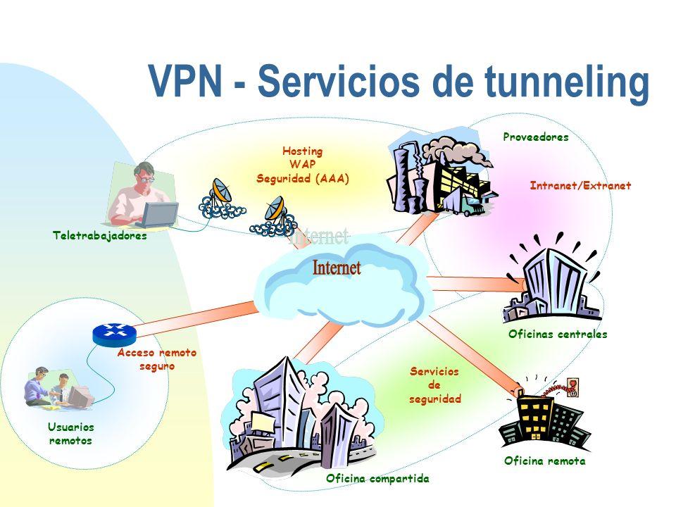 VPN - Servicios de tunneling