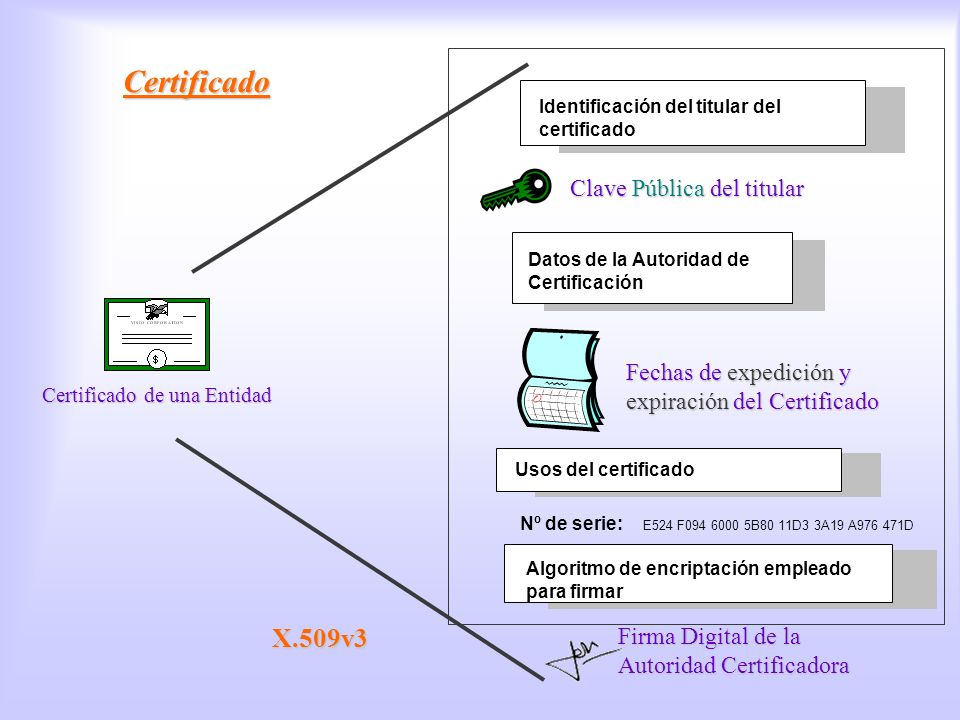 Certificado Certificado X.509v3 Clave Pública del titular
