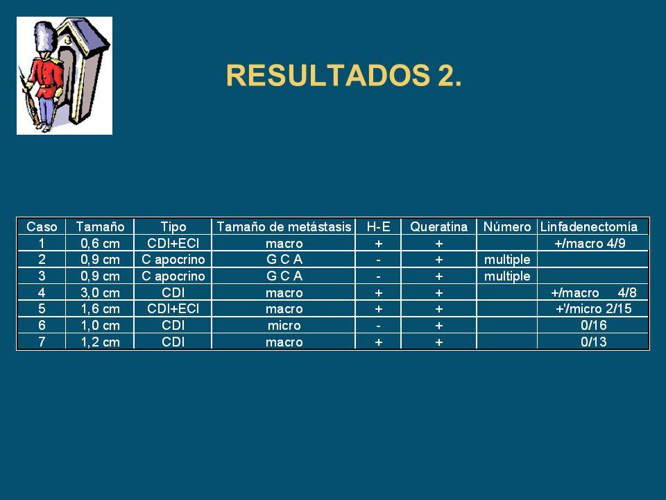 RESULTADOS 2.