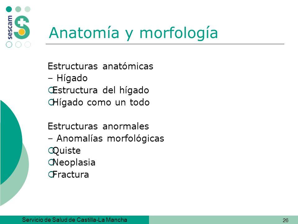 Anatomía y morfología Estructuras anatómicas – Hígado