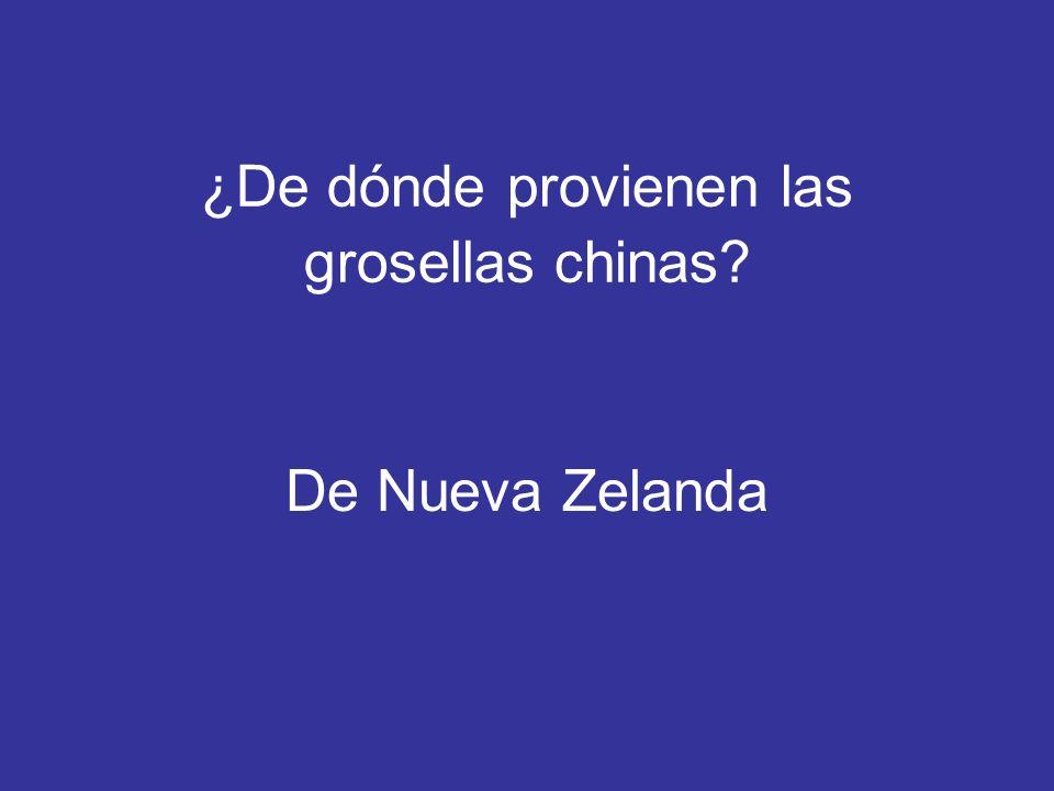 ¿De dónde provienen las grosellas chinas
