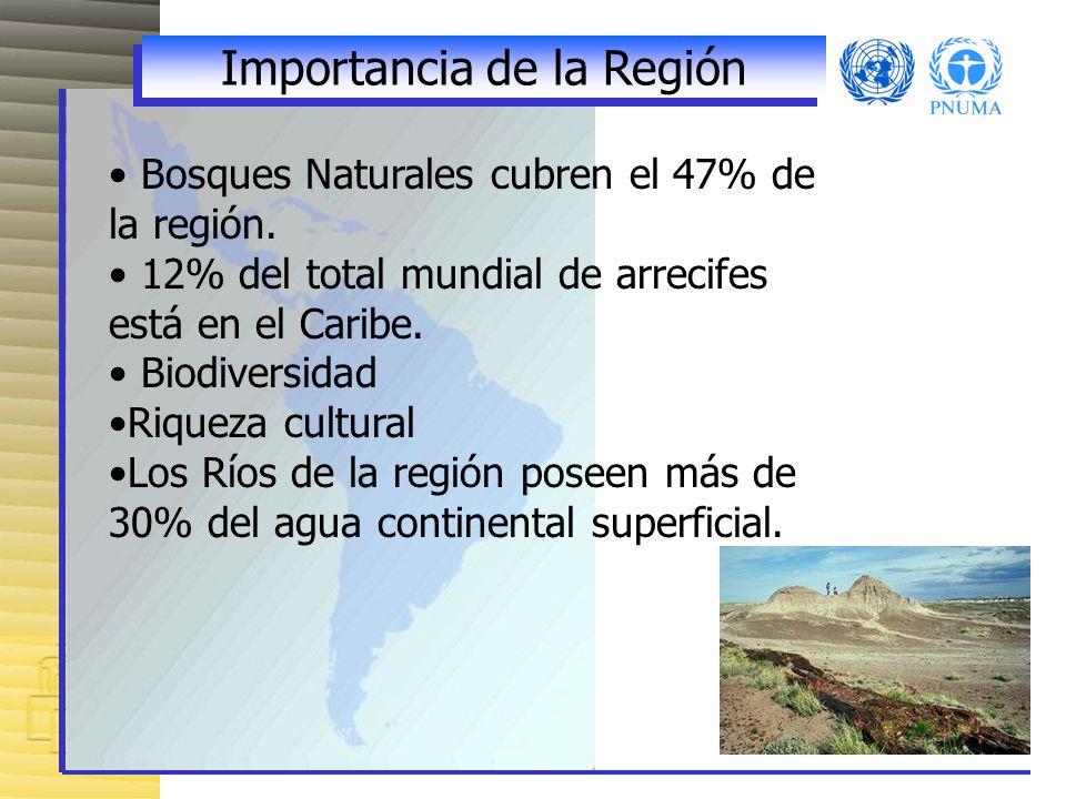 Importancia de la Región