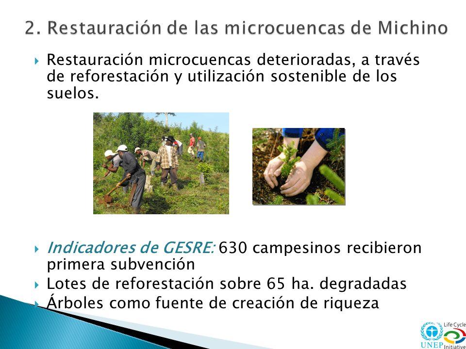 2. Restauración de las microcuencas de Michino
