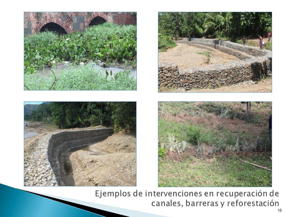 Ejemplos de intervenciones en recuperación de canales, barreras y reforestación