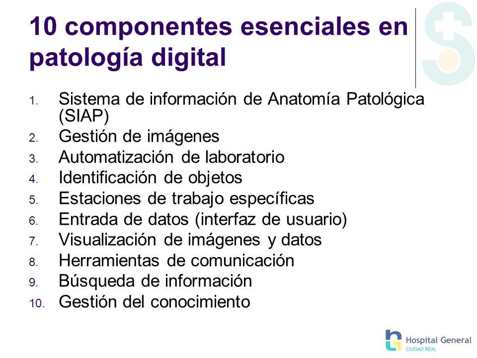 10 componentes esenciales en patología digital
