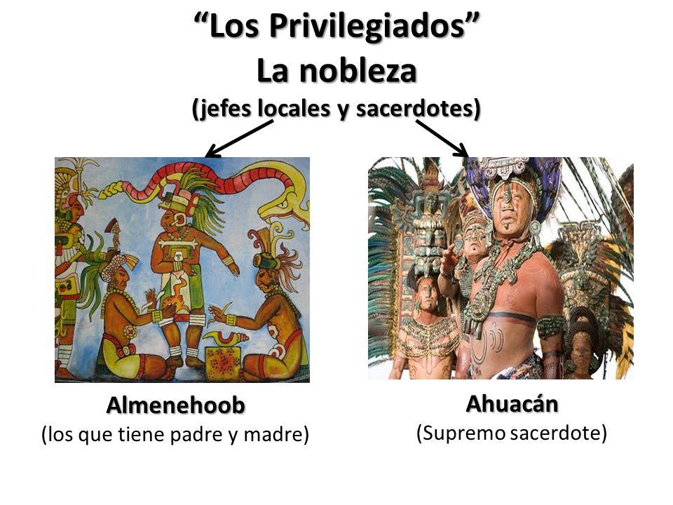 Los Privilegiados La nobleza (jefes locales y sacerdotes)