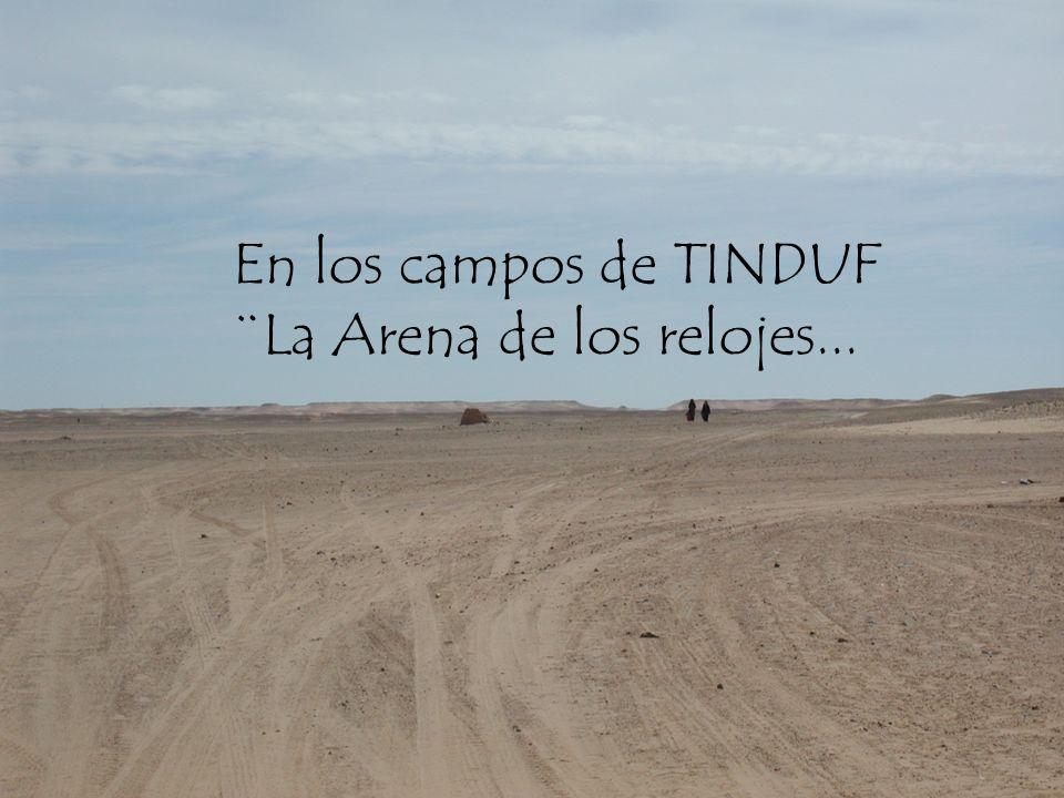 En los campos de TINDUF ¨La Arena de los relojes...