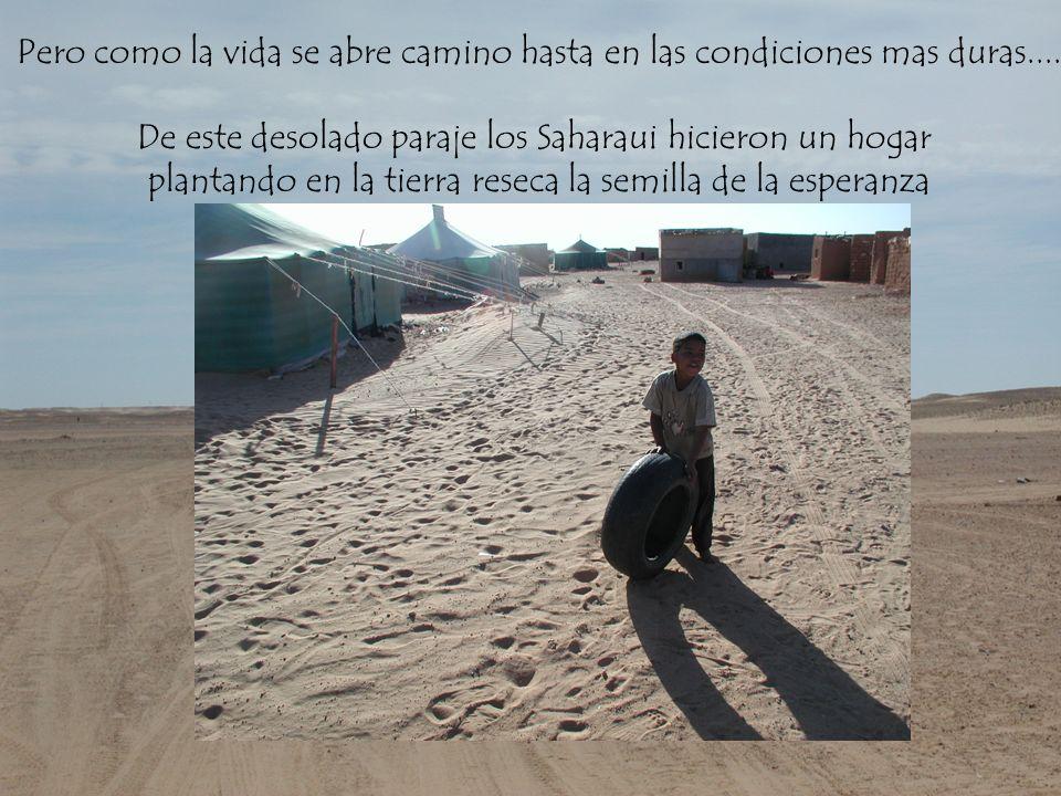 De este desolado paraje los Saharaui hicieron un hogar