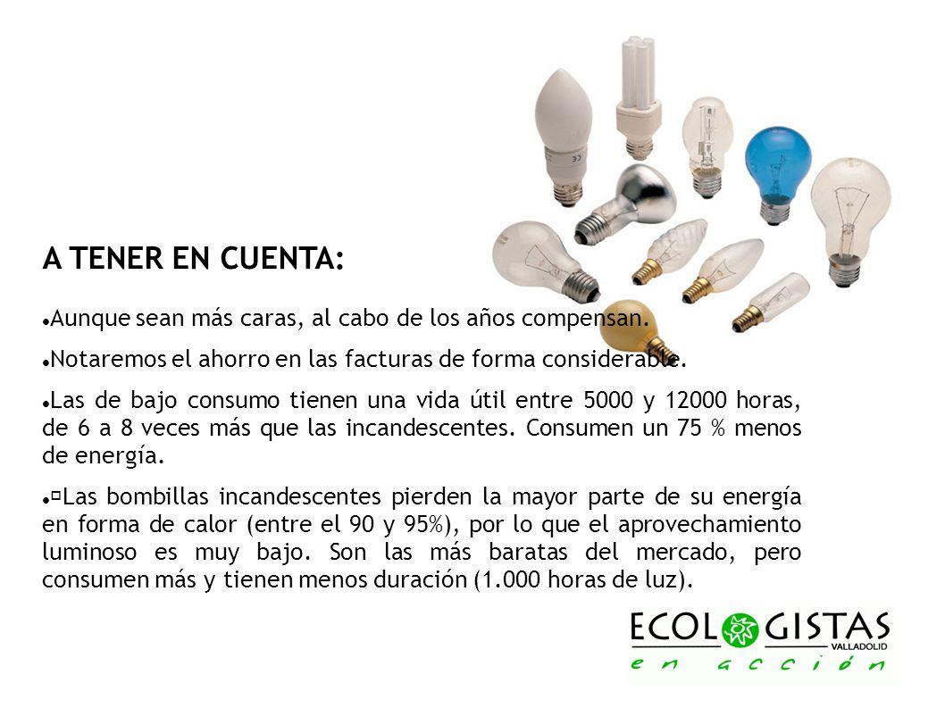 A TENER EN CUENTA:Aunque sean más caras, al cabo de los años compensan. Notaremos el ahorro en las facturas de forma considerable.