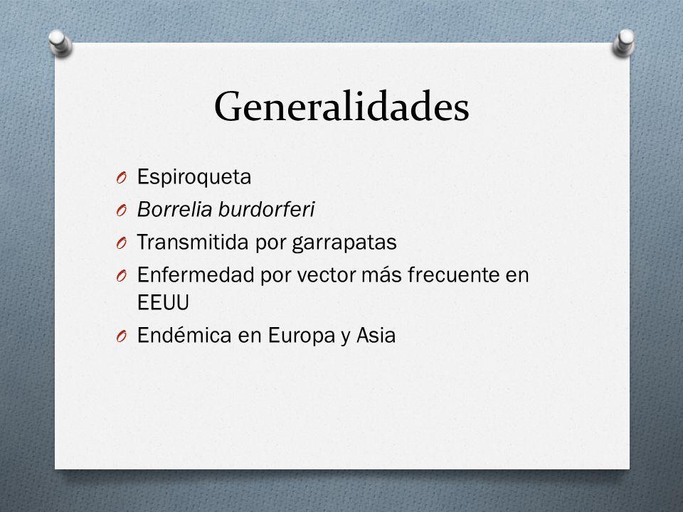 Generalidades Espiroqueta Borrelia burdorferi