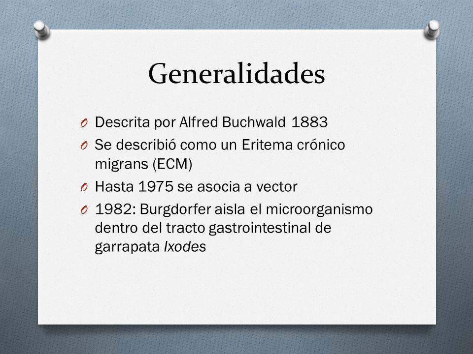 Generalidades Descrita por Alfred Buchwald 1883