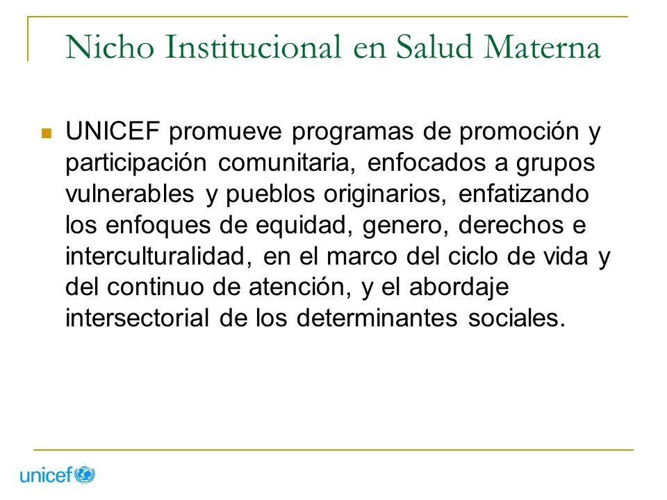 Nicho Institucional en Salud Materna