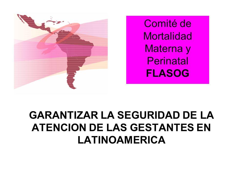 Comité de Mortalidad Materna y Perinatal FLASOG