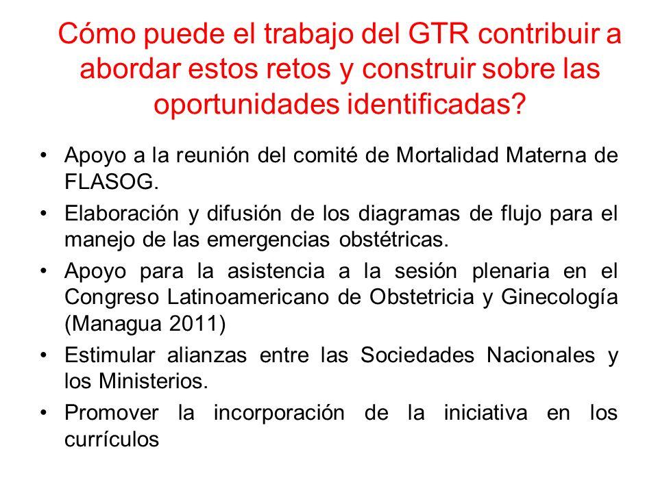 Cómo puede el trabajo del GTR contribuir a abordar estos retos y construir sobre las oportunidades identificadas