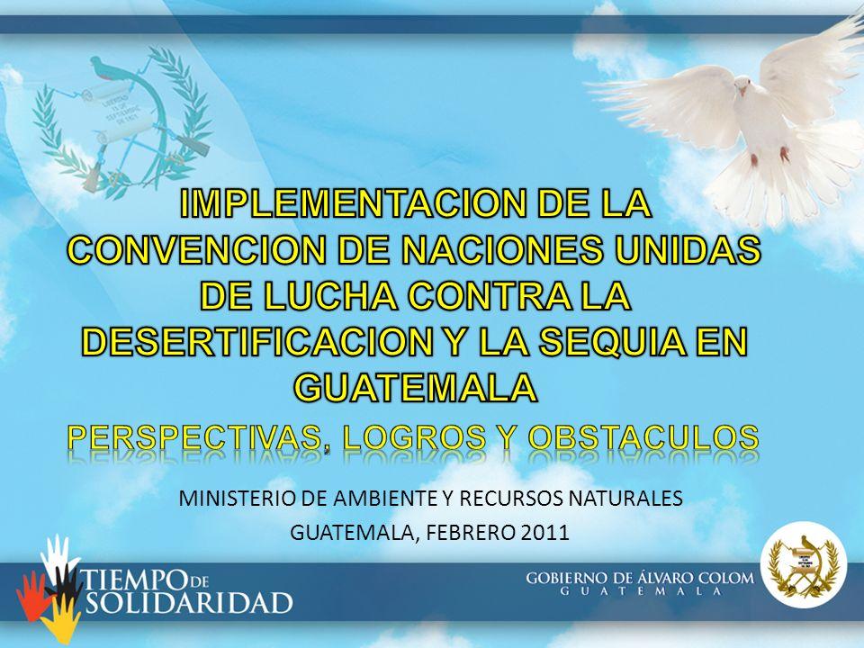 MINISTERIO DE AMBIENTE Y RECURSOS NATURALES GUATEMALA, FEBRERO 2011