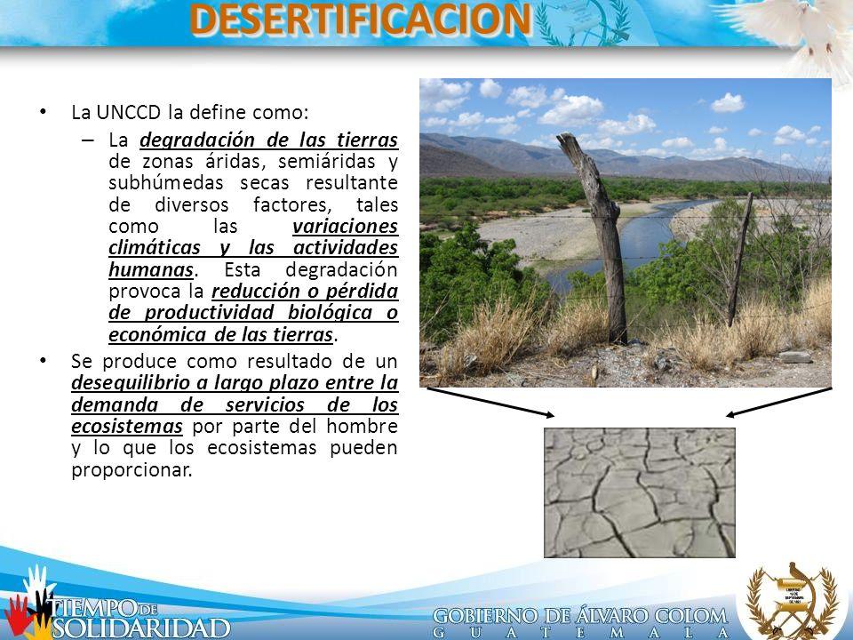 DESERTIFICACION La UNCCD la define como: