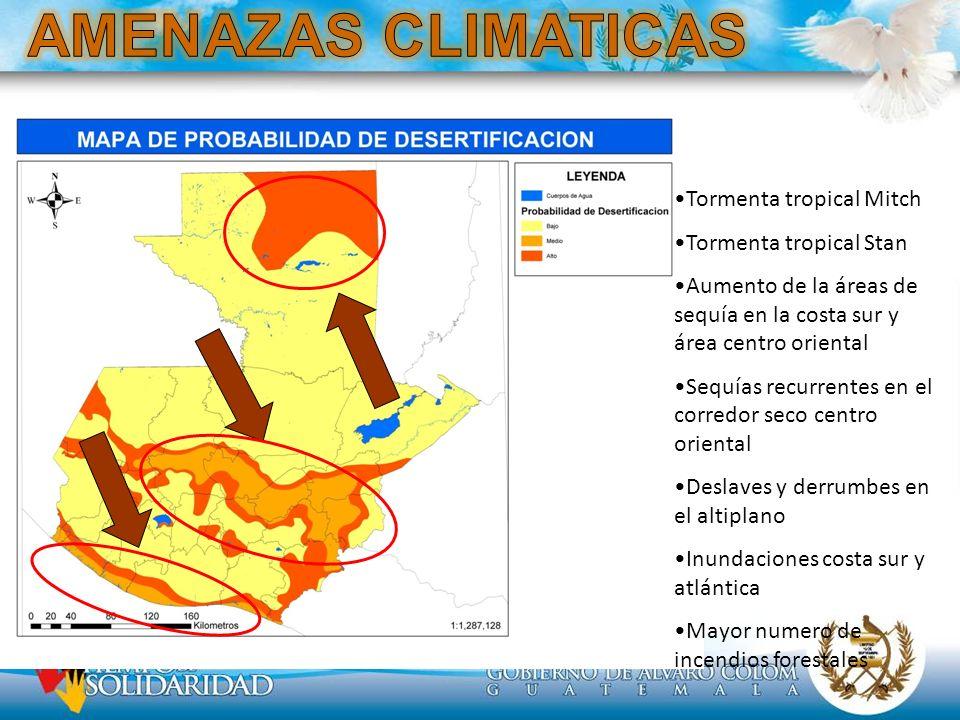 AMENAZAS CLIMATICAS Tormenta tropical Mitch Tormenta tropical Stan