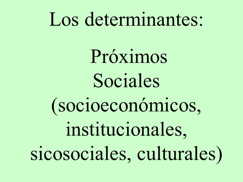 Sociales (socioeconómicos, institucionales, sicosociales, culturales)
