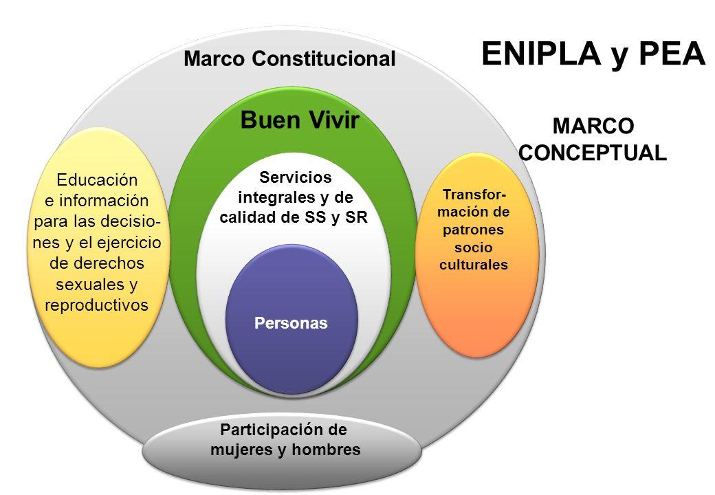 ENIPLA y PEA MARCO CONCEPTUAL