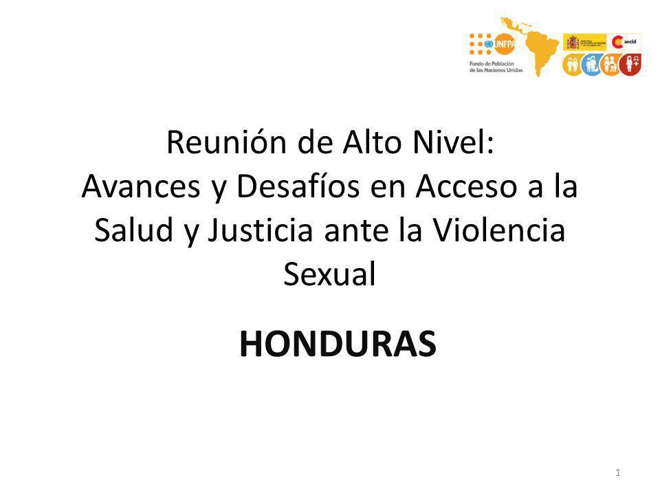Reunión de Alto Nivel: Avances y Desafíos en Acceso a la Salud y Justicia ante la Violencia Sexual