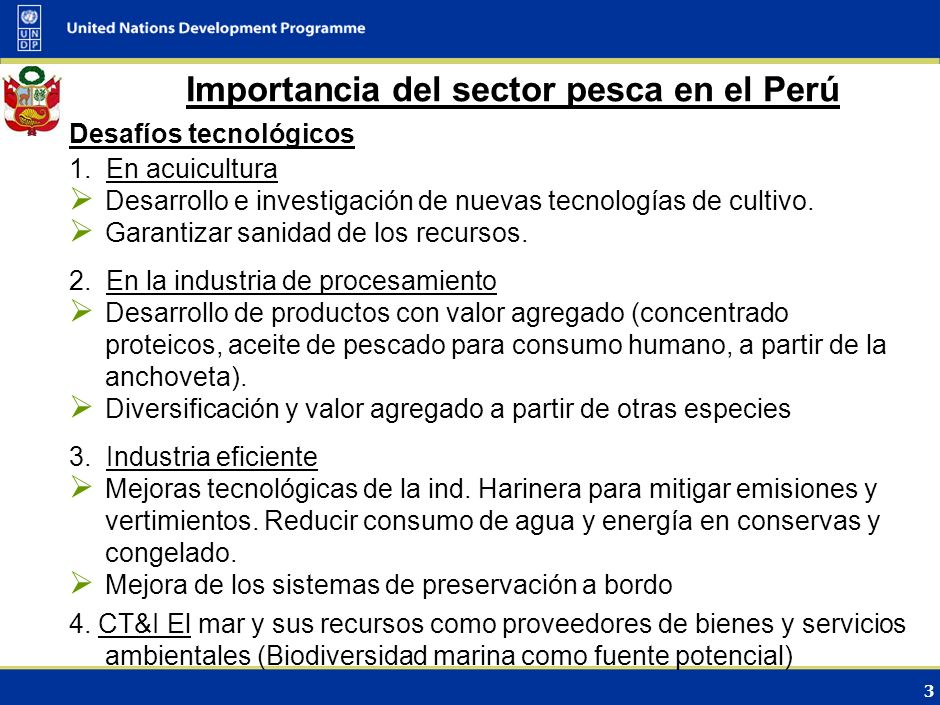 Importancia del sector pesca en el Perú