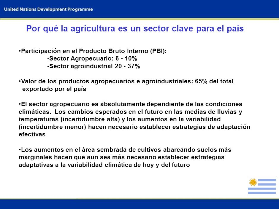 Por qué la agricultura es un sector clave para el país