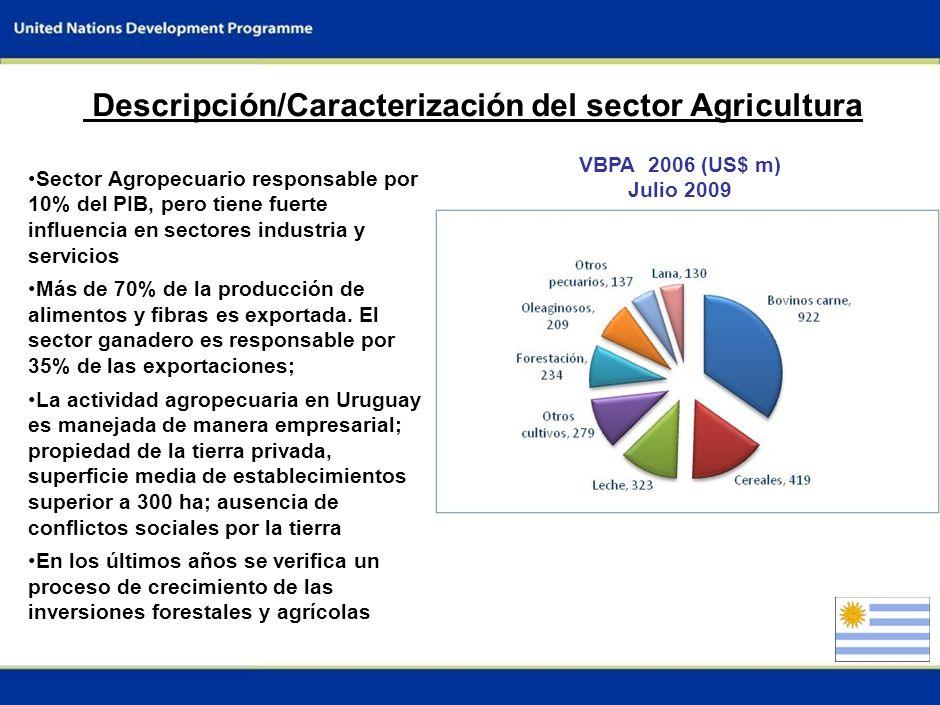 Descripción/Caracterización del sector Agricultura