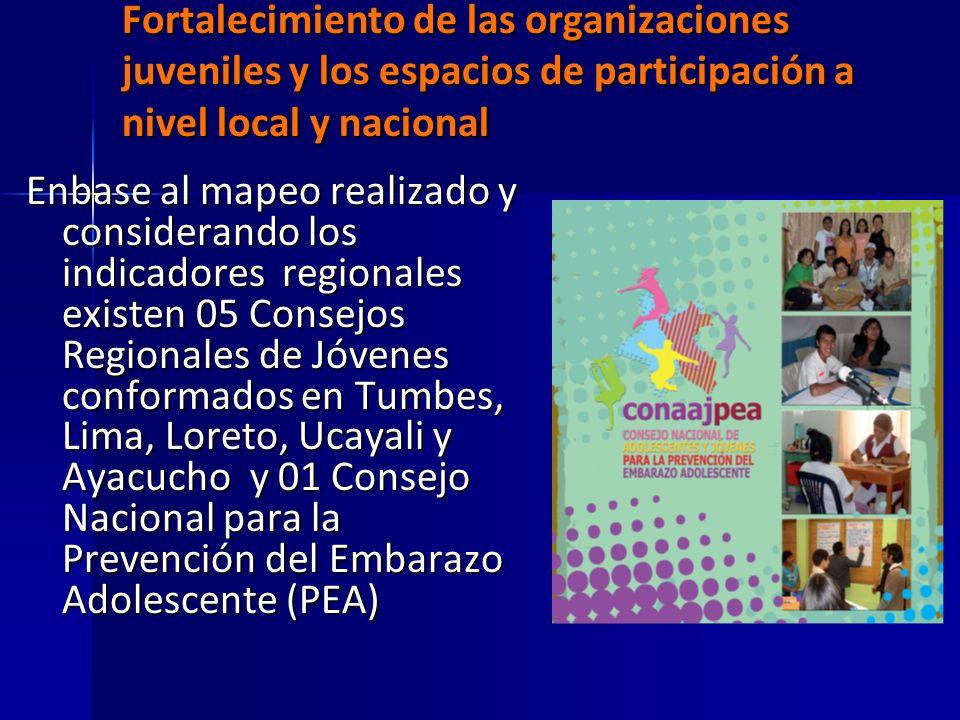 Fortalecimiento de las organizaciones juveniles y los espacios de participación a nivel local y nacional