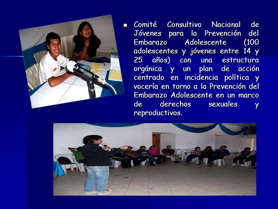 Comité Consultivo Nacional de Jóvenes para la Prevención del Embarazo Adolescente (100 adolescentes y jóvenes entre 14 y 25 años) con una estructura orgánica y un plan de acción centrado en incidencia política y vocería en torno a la Prevención del Embarazo Adolescente en un marco de derechos sexuales y reproductivos.